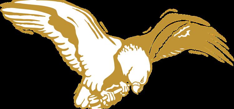 eagle-46085_1280